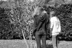 Clara & Mary-Lou - 4ème 4